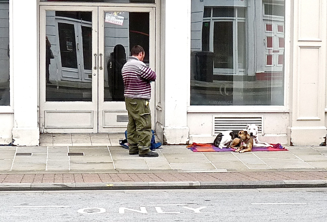 homeless man with his dogs in Salisbury