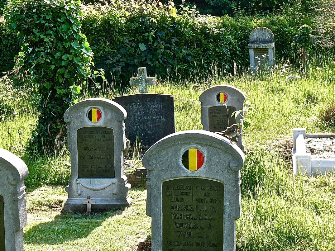 Belgian Soldiers War Graves, some of the many nationalities of soldiers buried at Southampton Common Old Cemetery.